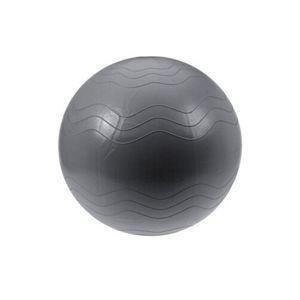 XQ Max Pomůcka na cvičení Yoga Ball pr. 65 cm, stříbrná
