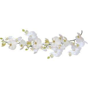 Kleine Wolke samolepka Orchidej