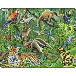 Larsen Puzzle Deštný prales Jižní Ameriky, 70 dílků