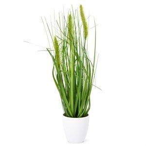 Umělá kvetoucí tráva Ines zelená, 36 cm