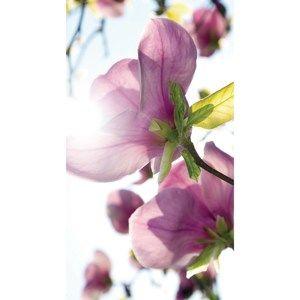 Závěs Flowers Purple, 140 x 245 cm